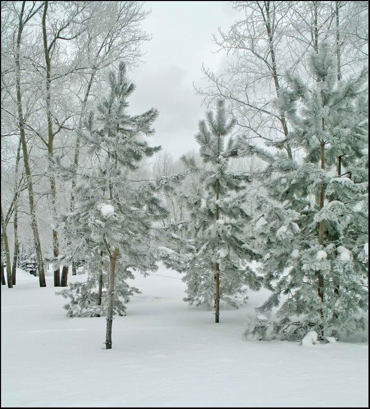 """фото """"Конец февраля..."""" метки: пейзаж, зима"""