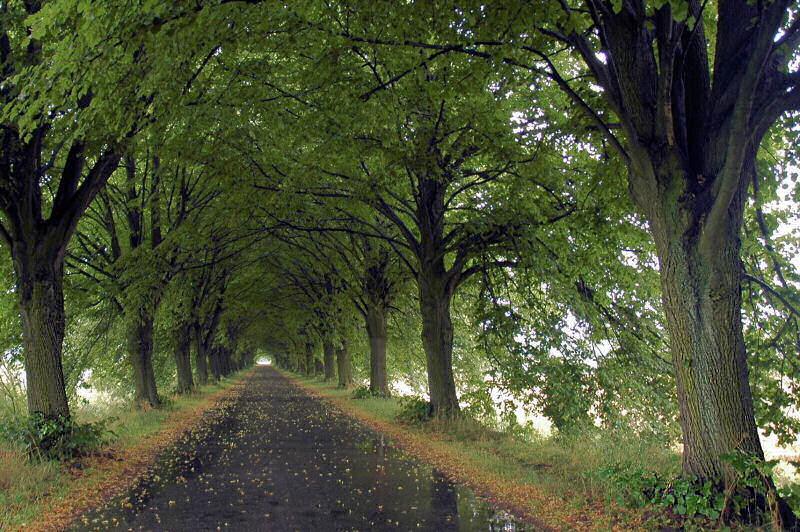 """фото """"***"""" метки: пейзаж, путешествия, Европа, осень"""