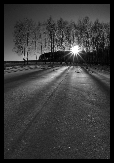 "photo ""About winter shadows..."" tags: landscape, black&white, winter"