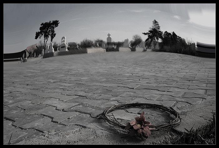 """фото """"Last crown"""" метки: абстракция,"""