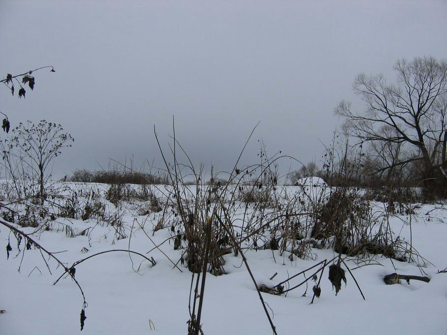 """фото """"Бустылы"""" метки: пейзаж, зима"""