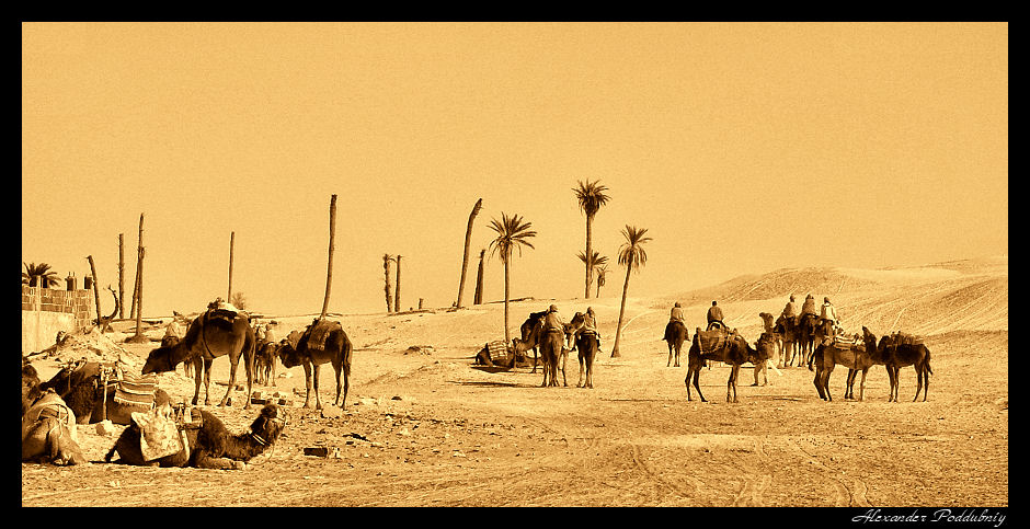 "photo ""***"" tags: travel, panoramic, Africa"