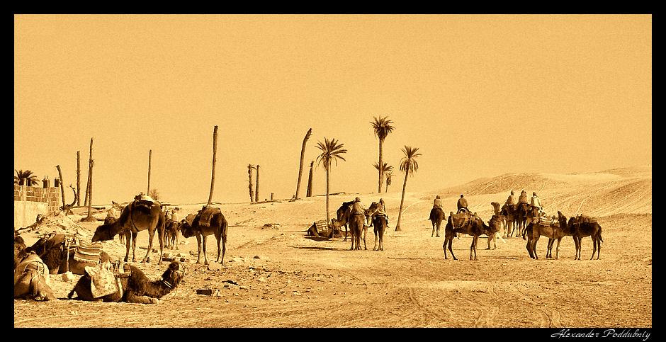 """фото """"SPIRITS OF THE DESERT"""" метки: путешествия, панорама, Африка"""