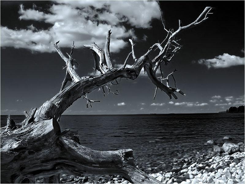 """фото """"Взывающий"""" метки: пейзаж, вода, облака"""