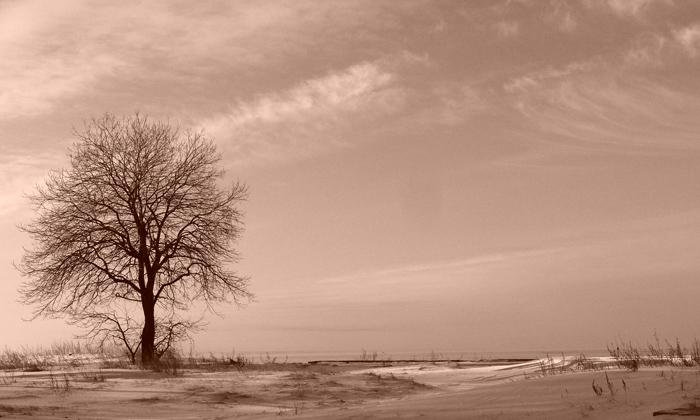 """фото """"&&&"""" метки: пейзаж, зима"""