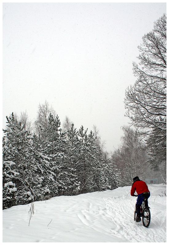 """photo """"Bicyclist"""" tags: landscape, genre, winter"""