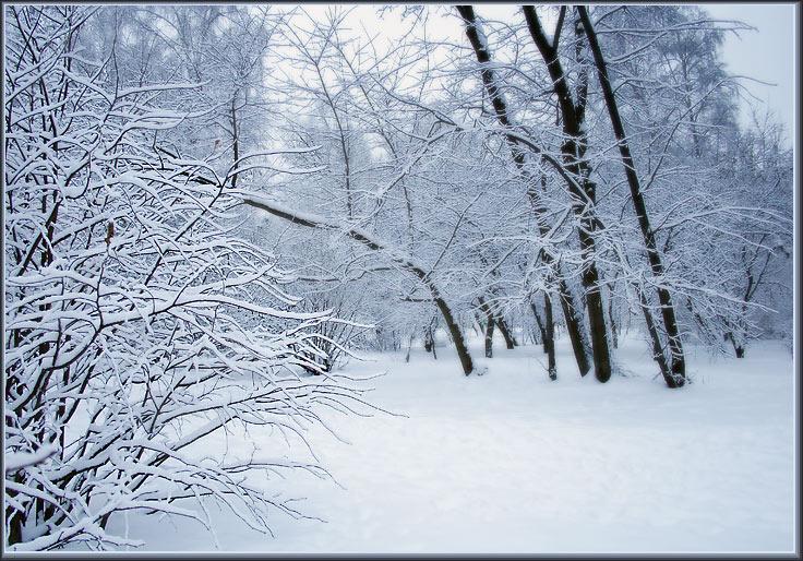 """фото """"Очень, очень снежная"""" метки: пейзаж, зима"""