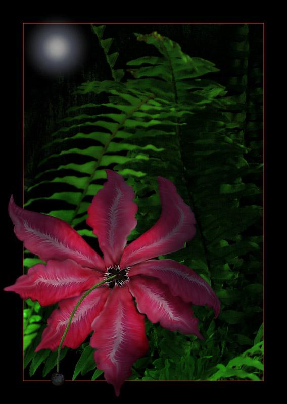 """фото """"Ночью, когда цветет папоротник..."""" метки: фотомонтаж,"""