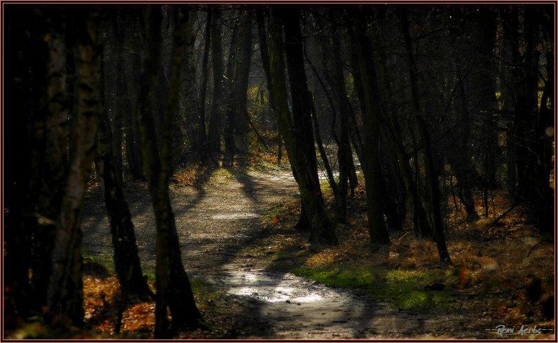"""фото """"a fine place"""" метки: пейзаж, зима"""