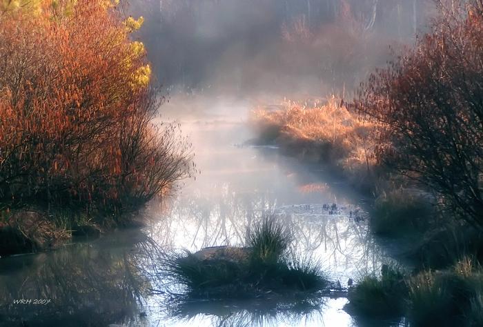 """фото """"Dawn's Early Light"""" метки: пейзаж, вода"""