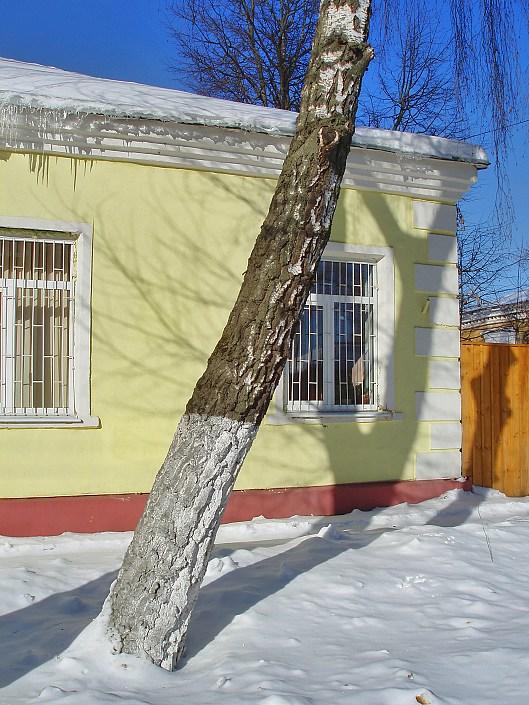 """фото """"Первые сосульки"""" метки: архитектура, пейзаж, зима"""