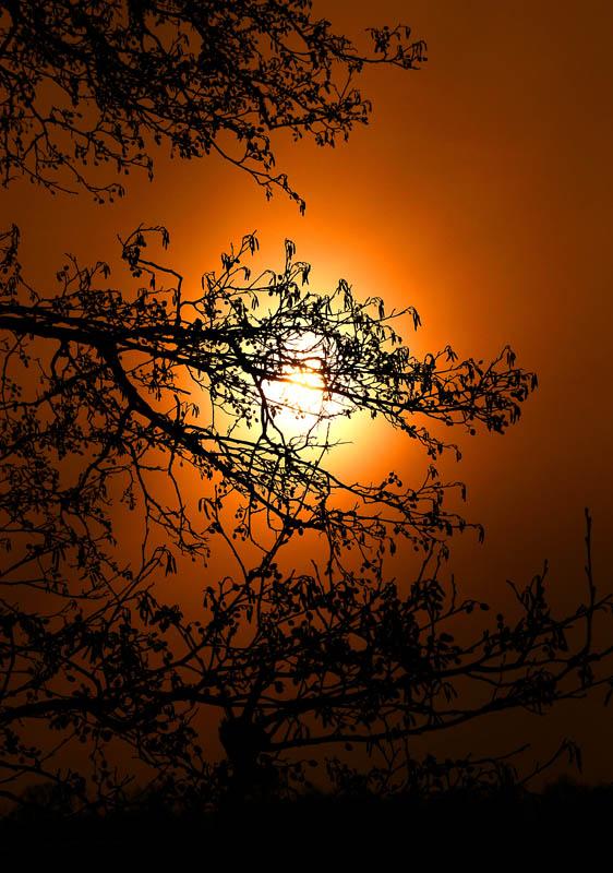 """фото """"закат"""" метки: пейзаж, природа, закат"""
