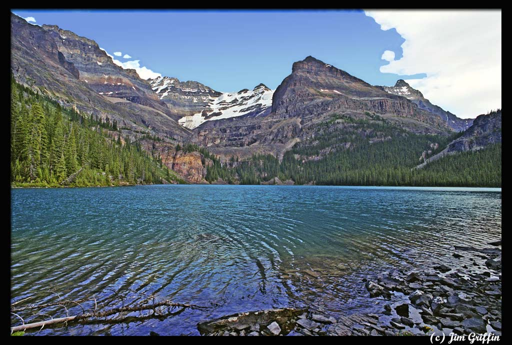 "photo ""Lake O'hara from ground view"" tags: landscape, mountains, water"