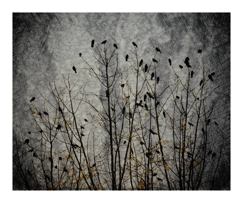 "photo ""autumn"" tags: abstract, misc.,"
