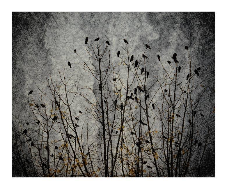 "фото ""autumn"" метки: абстракция, разное,"