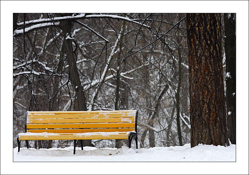 """фото """"Банальная скамейка"""" метки: пейзаж,"""