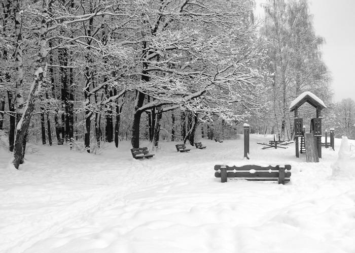 "фото ""До будующей Весны..."" метки: природа, пейзаж, зима"