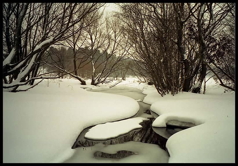 "фото ""Оттепель"" метки: пейзаж, зима"