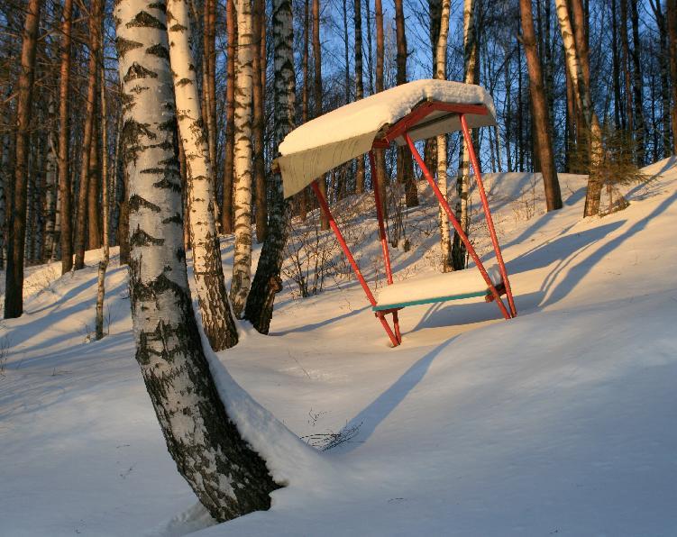 """фото """"Не нужна до весны..."""" метки: пейзаж, зима, лес"""