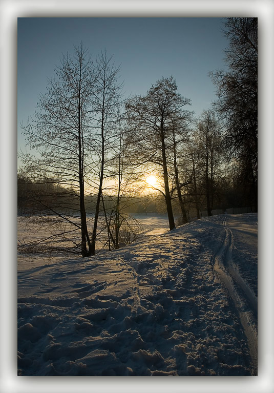 "фото ""Morning in a winter wood"" метки: пейзаж, зима"