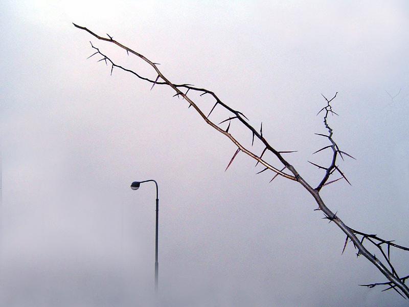 "photo ""Per Aspera..."" tags: landscape,"