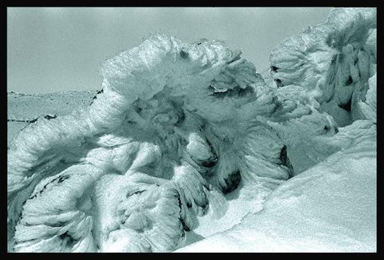 "фото ""После бури наг.Хермон(Израиль)"" метки: пейзаж, зима"