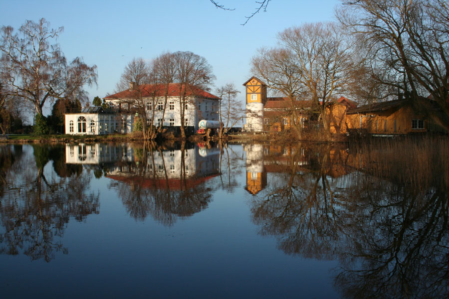 "фото ""Reflection"" метки: пейзаж, вода, зима"