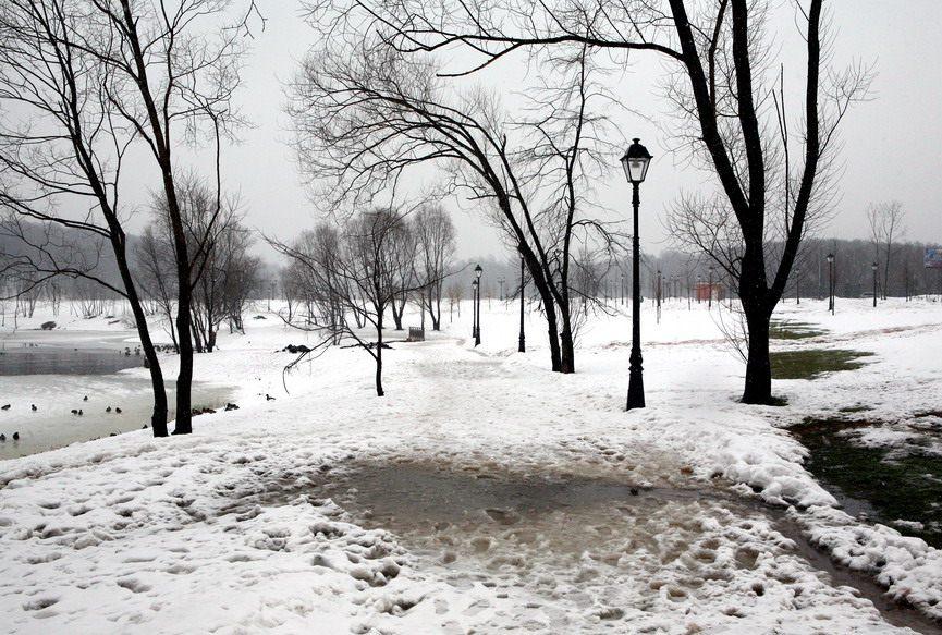 "фото ""Оттепель"" метки: пейзаж, природа, зима"