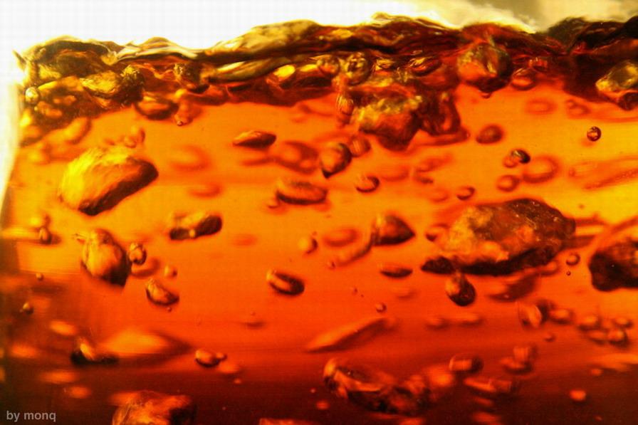 """photo """"beer"""" tags: abstract, macro and close-up,"""
