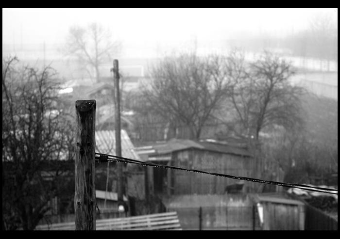 "фото ""The mornings of a happy man"" метки: пейзаж, черно-белые, зима"