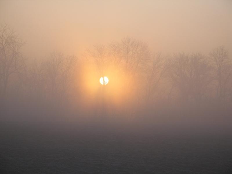 """фото """"Утро туманное."""" метки: пейзаж,"""