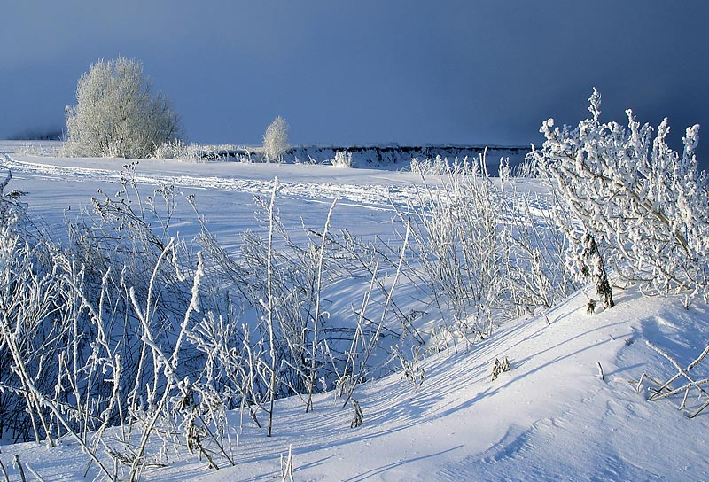 """фото """"По морозцу."""" метки: пейзаж, зима"""
