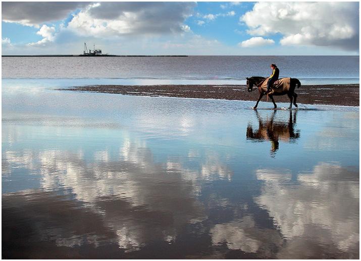"""фото """"wandering at the river.."""" метки: пейзаж, природа, вода, домашние животные"""