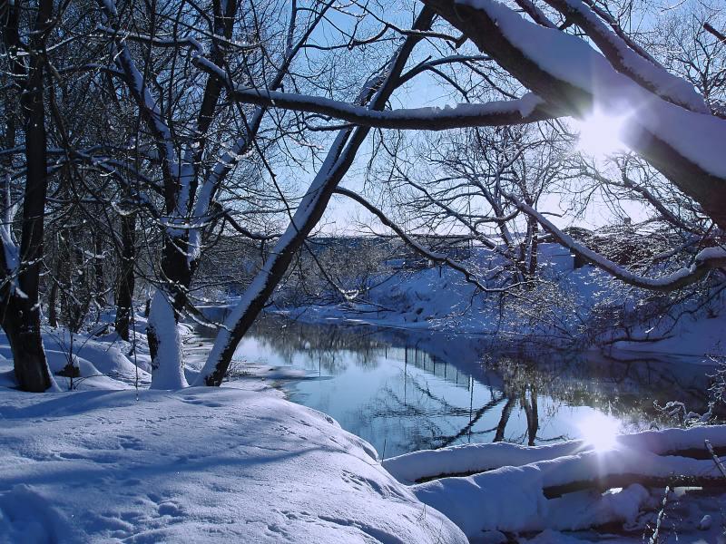 "фото ""Картинки из ""мусорной"" корзинки"" метки: пейзаж, зима"