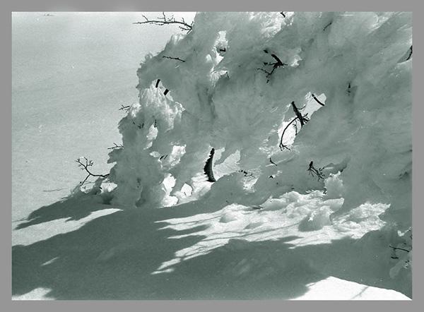 """фото """"После бури 2"""" метки: пейзаж, зима"""