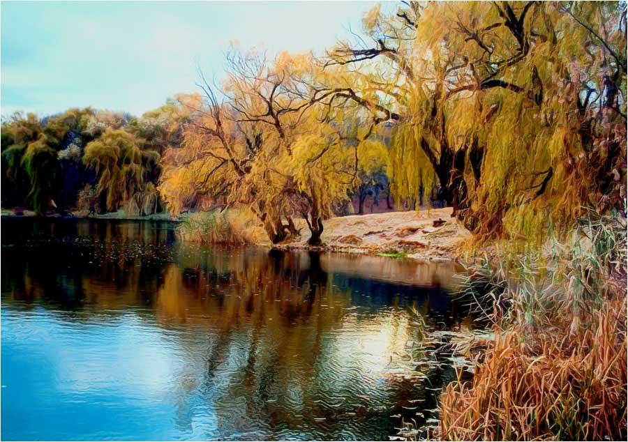 """фото """"Осенняя медитация"""" метки: пейзаж, осень"""