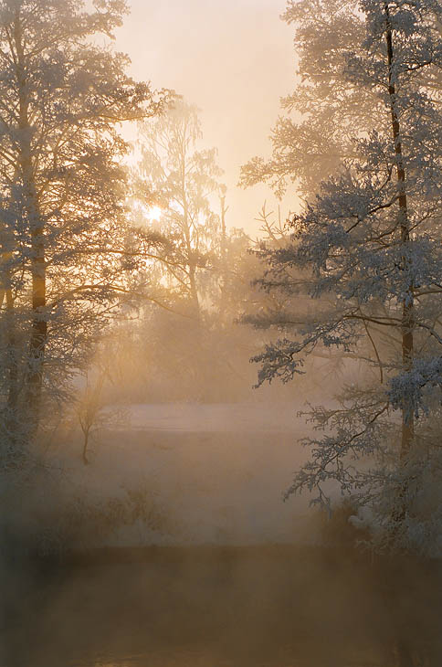 "photo ""Foggy summer"" tags: landscape, nature, winter"