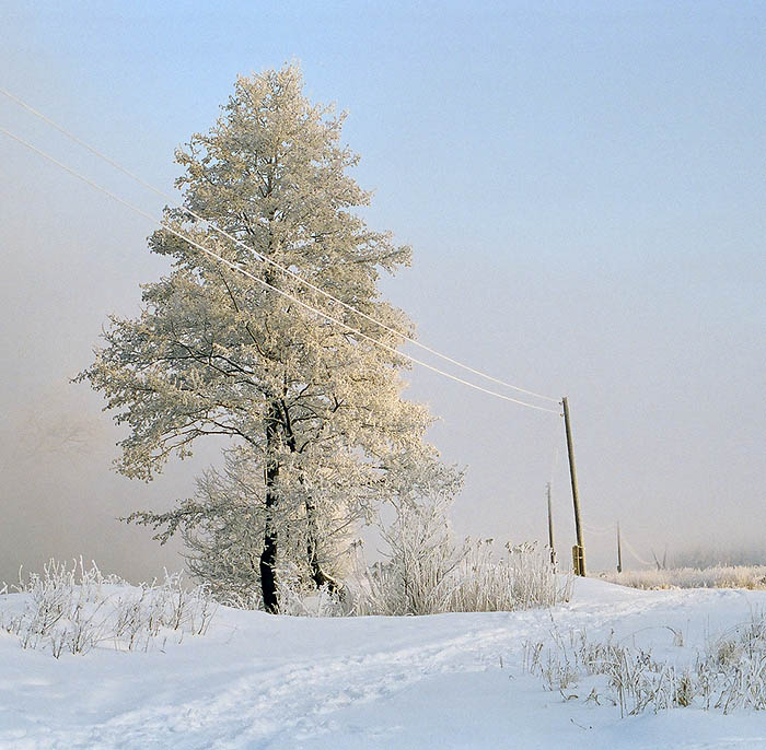 """фото """"Зимняя пустота"""" метки: пейзаж, природа, зима"""