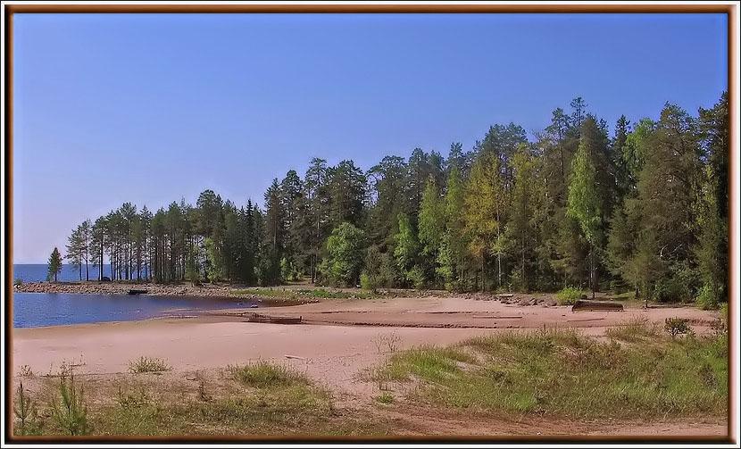 """фото """"Ладожские дюны. Побережье."""" метки: пейзаж, вода"""