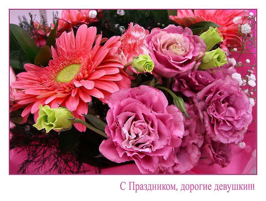 """фото """"8 марта !!!"""" метки: макро и крупный план, природа, цветы"""