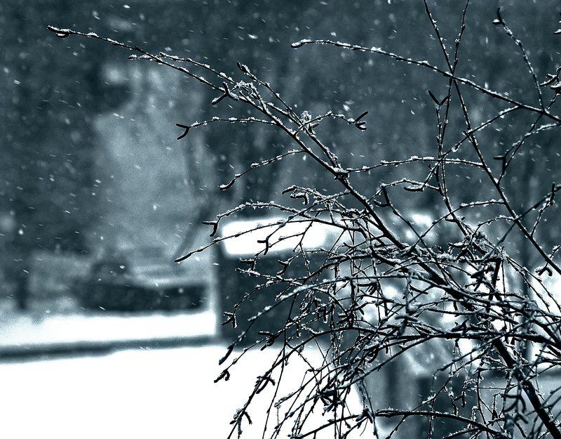 """photo """"Tombe la neige"""" tags: landscape, winter"""