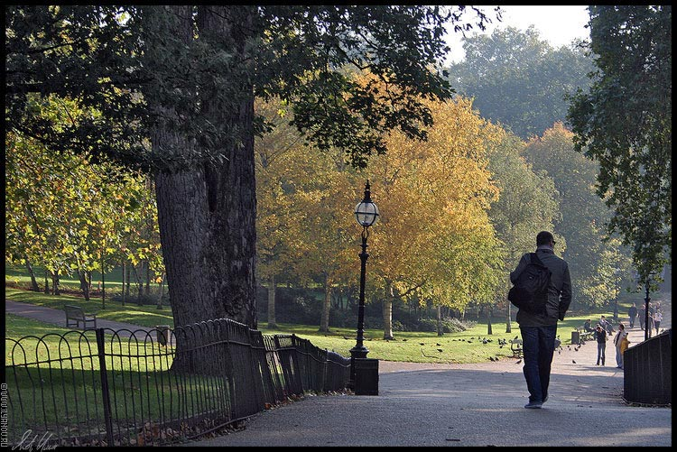 "photo ""Hyde Park / London"" tags: landscape, travel, Europe, forest"