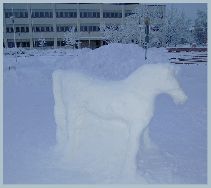 "photo ""Snow art"" tags: reporting, misc.,"
