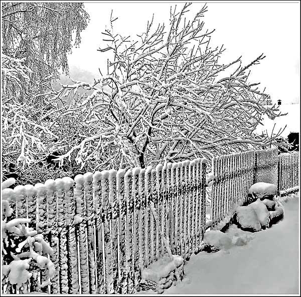 """фото """"Это уже последний снег..."""" метки: разное,"""