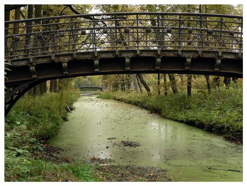 """фото """"Два моста"""" метки: природа,"""
