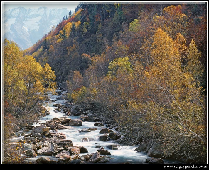 "photo ""The mountain river in paints of a mellow autumn"" tags: landscape, forest, mountains"