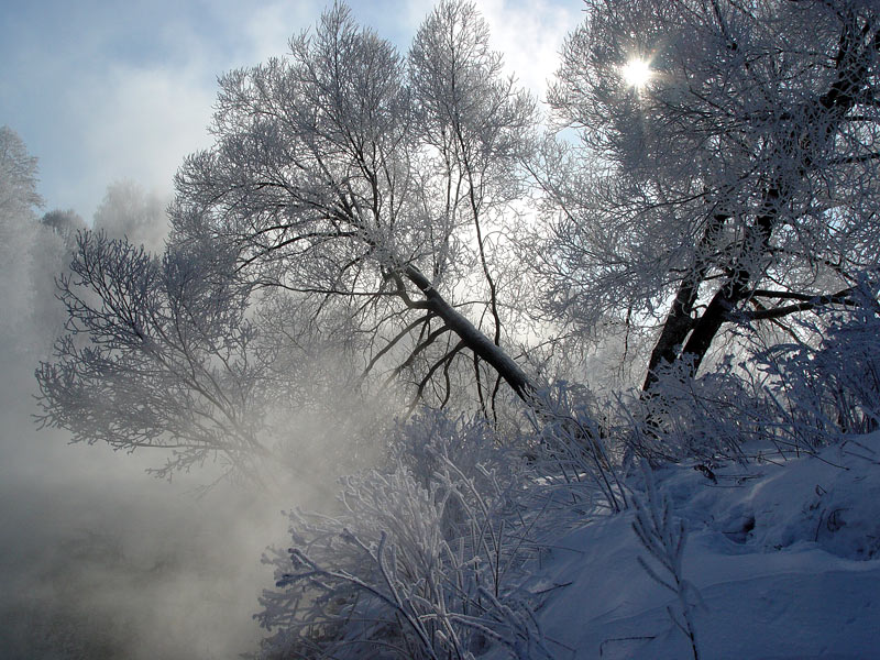 """фото """"По берегу."""" метки: пейзаж, зима"""