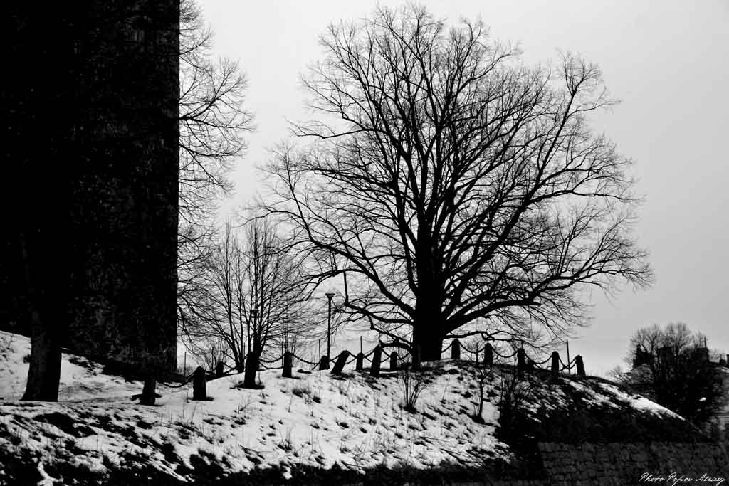 """фото """"Выборгский замок"""" метки: архитектура, путешествия, пейзаж,"""