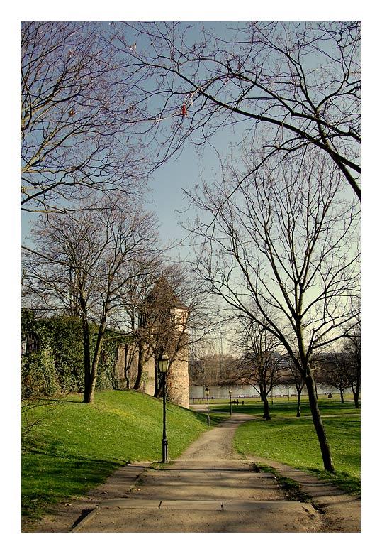 """фото """"the way"""" метки: пейзаж, природа,"""