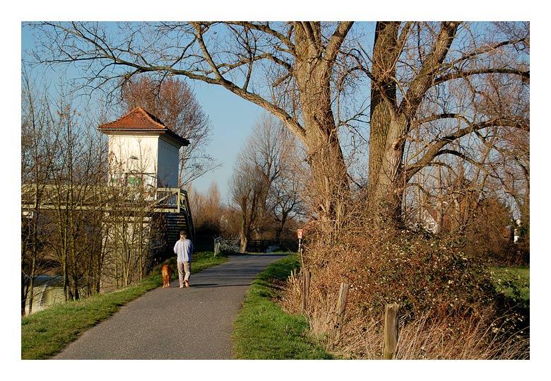 """фото """"a man and his dog"""" метки: пейзаж, весна"""